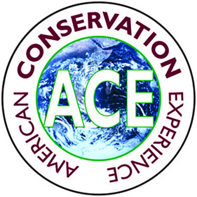ACE-logo-white