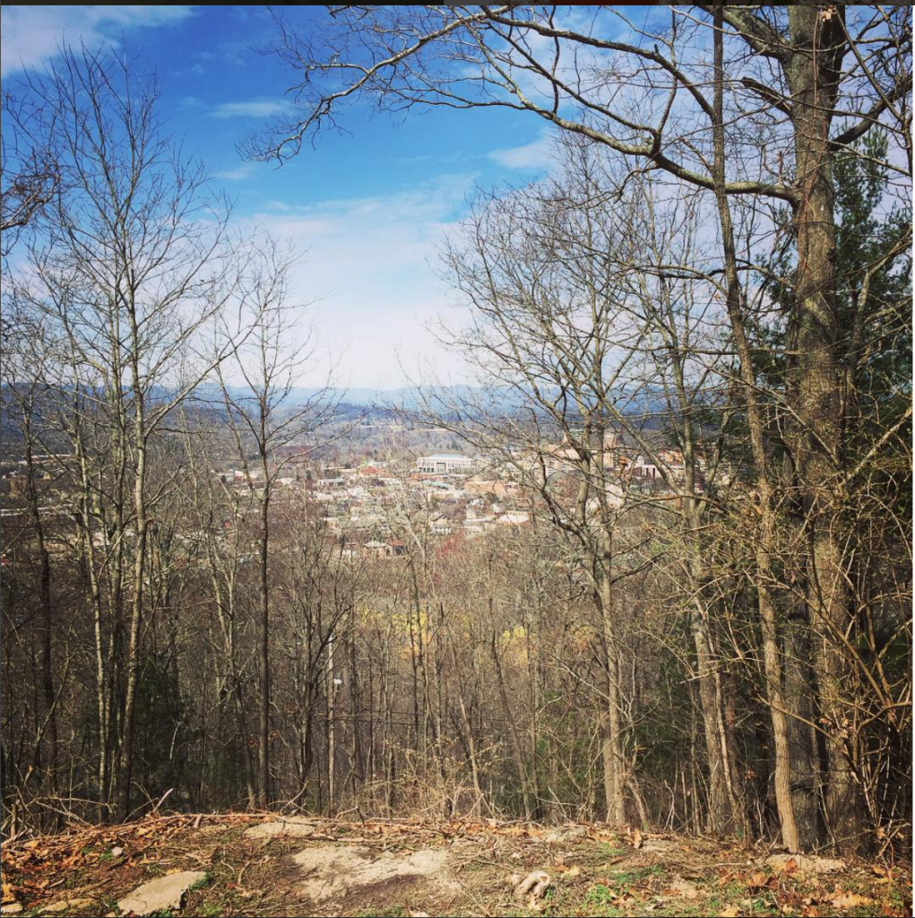asheville-view